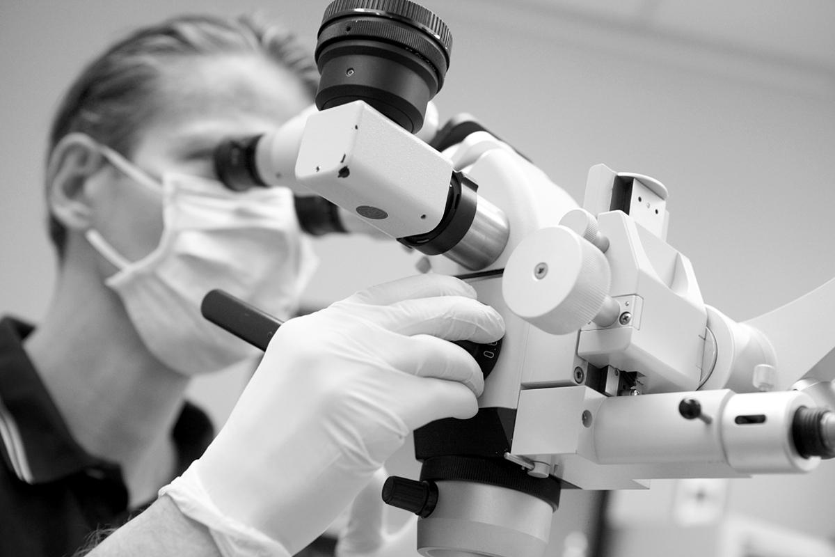 Mikroskop lupenbrille und licht dr verch priv doz dr